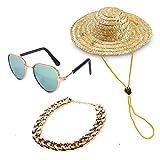 YESSART Pet Dog Cat Costume Fashion Sunglasses Gold Chain Collar Hat Set of 3