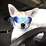 Namsan Doggie Goggles Dog Sunglasses for Small Dogs Puppy Goggles for Eye Protection (Bright Blue)
