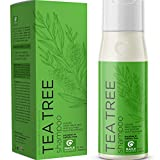 Tea Tree Shampoo for Oily Hair - Sulfate Free Shampoo for Greasy Hair and Oily Scalp Care - Natural Clarifying Shampoo for Build Up with Pure Tea Tree Oil for Hair Volume Clean Shine and Dry Scalp