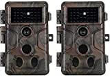 2-Pack No Glow Game & Deer Trail Cameras 24MP 1296P H.264 Video 100ft Night Vision Motion Activated 0.1S Trigger Speed Waterproof Farm & Yard Cameras for Home Surveillance & Outdoor Wildlife Hunting