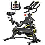 Cyclace Indoor Exercise Bike Stationary Cycling Bike with Ipad Holder for Home Workout