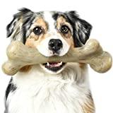 Pet Qwerks Real Bacon Infused Dinosaur BarkBone - Durable Dog Toy for Aggressive Chewers, Tough Indestructible Power Chewer Bones | Made in USA, FDA Compliant Nylon - XLarge for Small Dogs