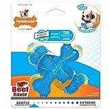 Nylabone Puppy Chew X Bone Chew Toy Beef Flavor Small/Regular - Up to 15 lbs.