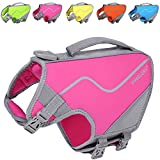 Vivaglory Small Dog Life Vest, New Neoprene Sports Style Life Jacket for Dogs with Strong Grab Handle for Emergency Rescue, Pink XS