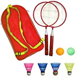AIKESIWAY Badminton Racket for Children 1 Pair, Nylon Alloy Durable Badminton Racquet Set for Kids Indoor/Outdoor Sport Game(Including 4 Badminton and 2 Table Tennis) (Red)