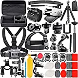 Neewer 53-In-1 Action Camera Accessory Kit Compatible with GoPro Hero 10 9 8 Max 7 6 5 4 Black GoPro 2018 Session Fusion Silver White Insta360 DJI AKASO APEMAN Campark SJCAM Action Camera etc