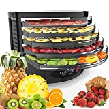 NutriChef Electric Food Dehydrator Machine - Professional Multi-Tier Hanging Food Preserver, Meat or Beef Jerky Maker, Fruit or Vegetable Dryer with 5 Stackable Trays, High-Heat Circulation- PKFD19BK