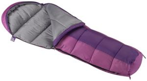4. Wenzel Backyard Mummy Sleeping Bag