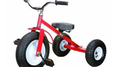 Photo of Top 10 Best Tricycles For Kids in 2020