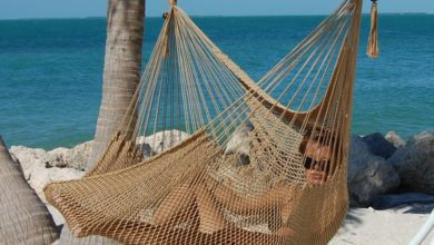 Photo of Top 10 Best Hammock Chairs in 2020