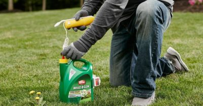 Top 10 Best Weed Killers in 2017