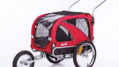 Photo of Top 10 Best Dog Strollers Carriages in 2021