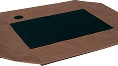 Photo of Top 10 Best Dog Bed Covers in 2021