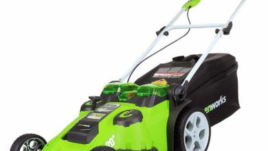 Photo of Top 10 Best Electric Lawn Mowers in 2020